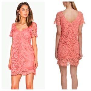 Pink BB Dakota lace dress